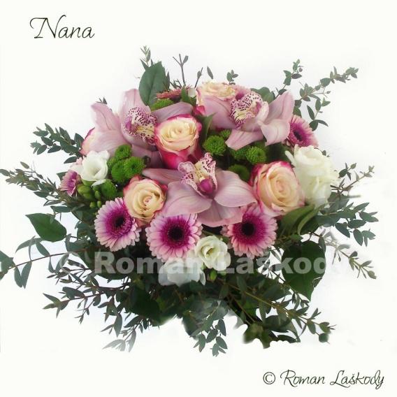 Kytica Nana