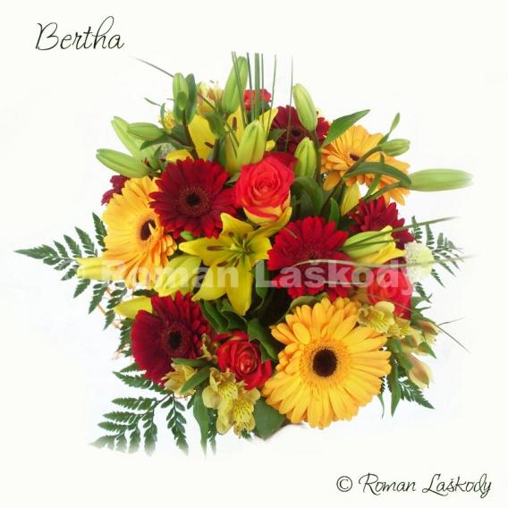 Kytica Bertha