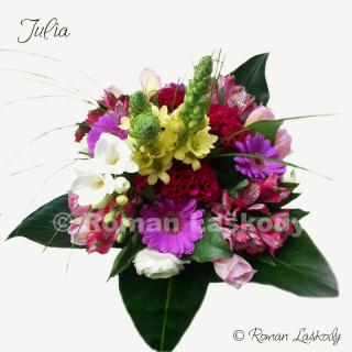 Kytica Julia