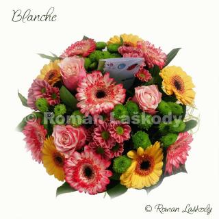 Kytica Blanche