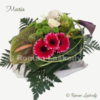 Kytica Maria