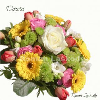 Kytica Dorota