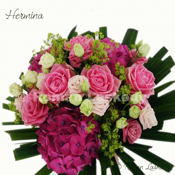 Kytica Hermina