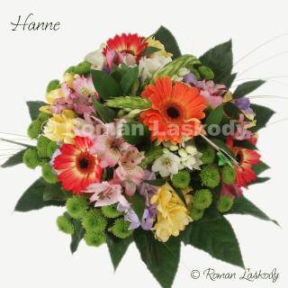 Kytica Hanne